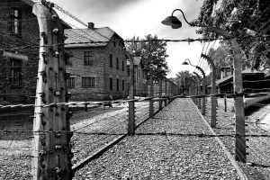 auschwitz concentration camp barbed wire